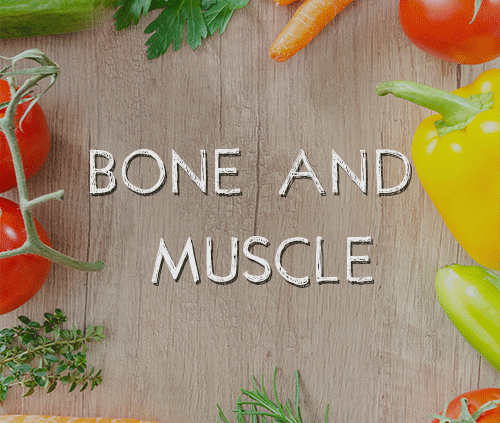 bone and muscle category